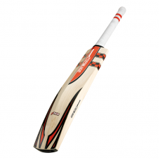 GRAY-NICOLLS AUTOGRAPH BAT-LABELLED F18 CRICKET BAT