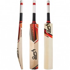 KOOKABURRA BLAZE PR1000 JUNIOR CRICKET BAT